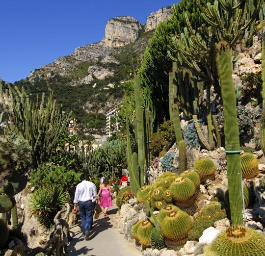 jardin monaco - Agencement de jardin aux meilleurs prix