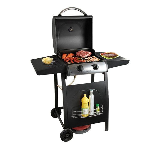 petit barbecue gaz - Agencement de jardin aux meilleurs prix